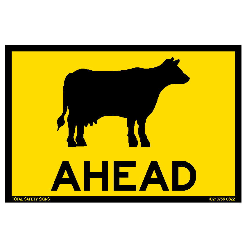Cattle Ahead 2
