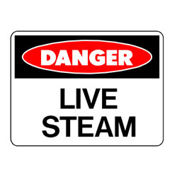 Danger Live Steam